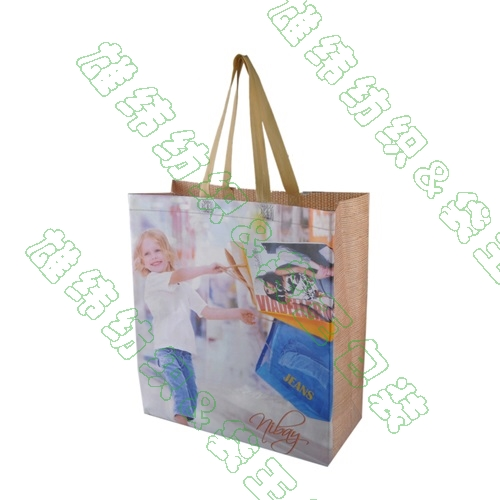 环保袋---FMD3